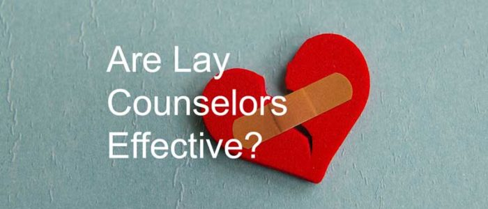 lay counselors